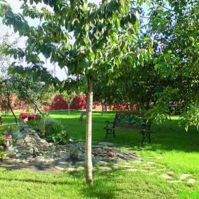 Кованная лавочка в тени высоких деревьев