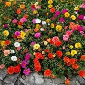 Садовый вазон из природного камня