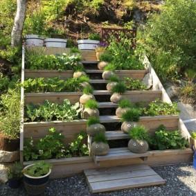 Декоративный огород на косогоре участка