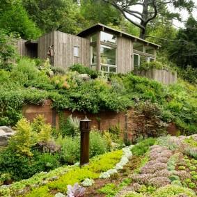 Деревянный домик на вершине участка