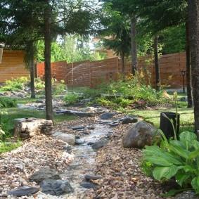 Естественный ручей между стволами сосен