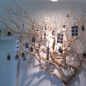 Семейные фотоснимки на ветках дерева