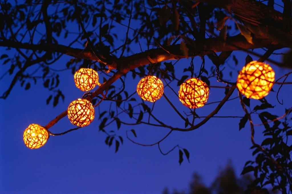 Светодиодная гирлянда на ветке садового дерева