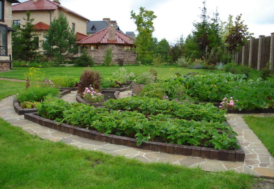 Аккуратные грядки с кирпичными бордюрами на садовом участке