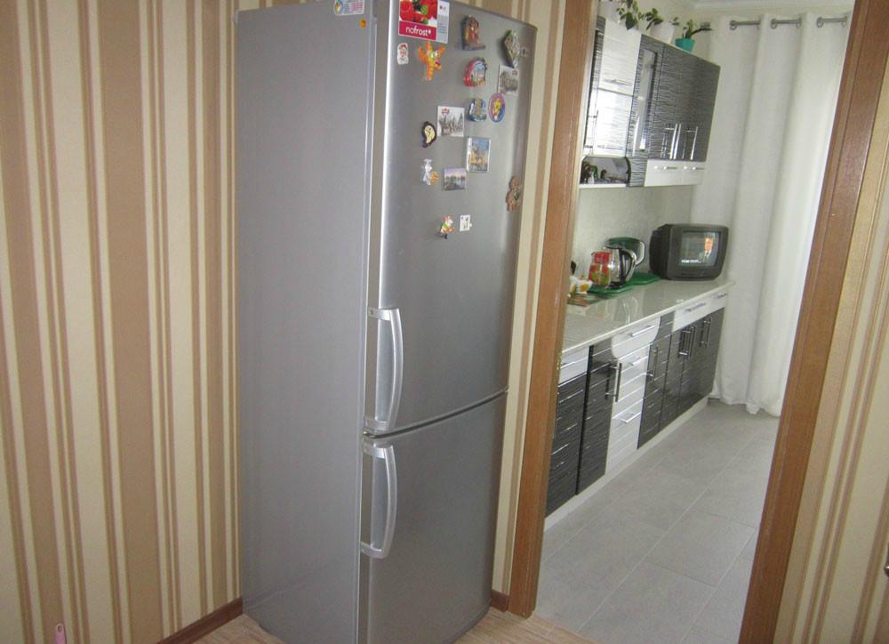 ещё вдобавок как спрятать холодильник в прихожей фото стекла оснащены