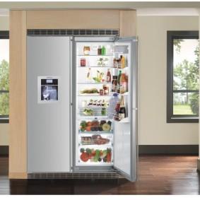 холодильник в прихожей и коридоре виды декора