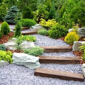 хвойные растения для сада оформление идеи