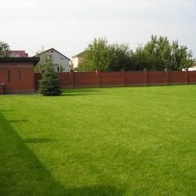 искусственный газон для дачи идеи дизайн