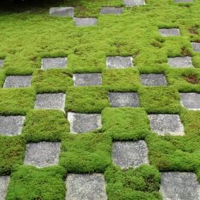 искусственный газон для дачи варианты фото