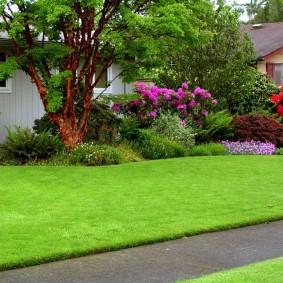 искусственный газон для дачи идеи фото