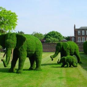 искусственный газон для дачи виды дизайна