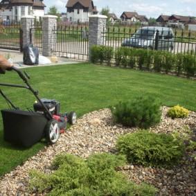искусственный газон для дачи варианты дизайна