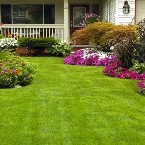искусственный газон для дачи фото дизайн