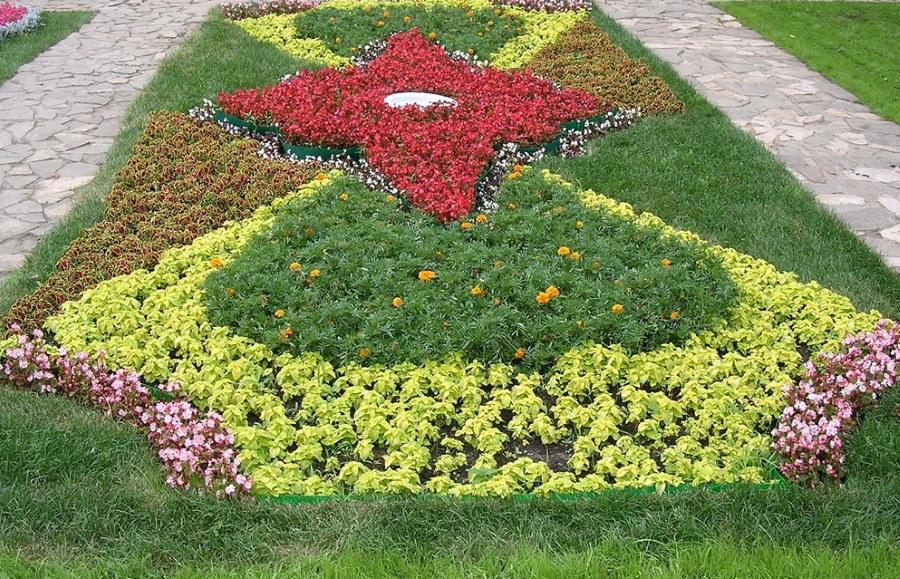 картинки клумбы с цветами квадратной формы бодрости