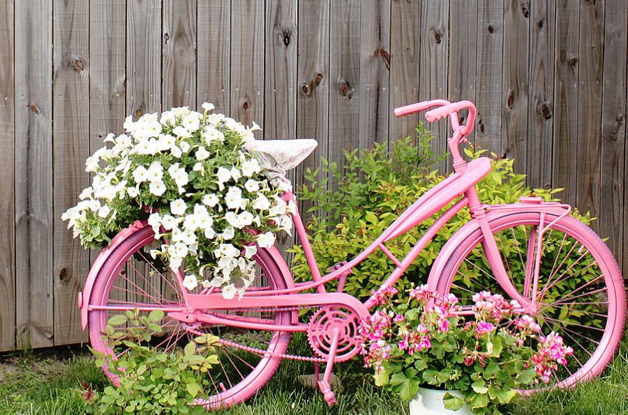 Садовая клумба из розового велосипеда
