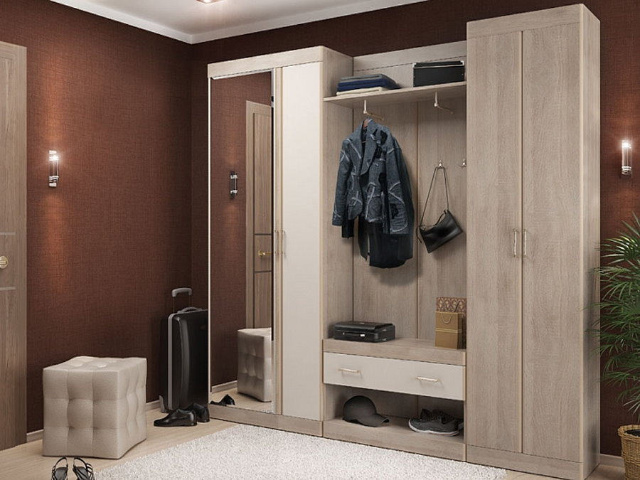 Интерьер современной прихожей с модульной мебелью