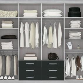 наполнение для шкафов и гардеробных виды дизайна