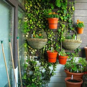 обустройство балкона и лоджии идеи варианты