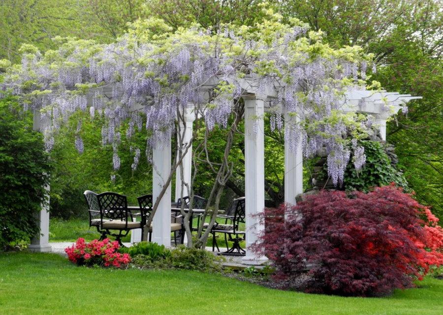 Пергола-беседка в глубине классического сада