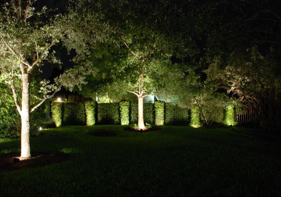 Декоративная подсветка деревьев в саду