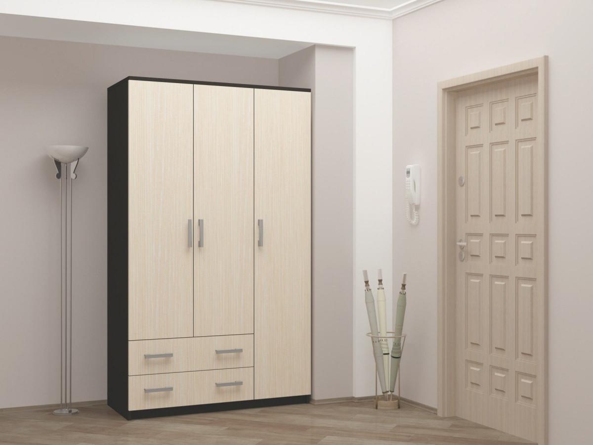 распашной шкаф в прихожую дизайн идеи