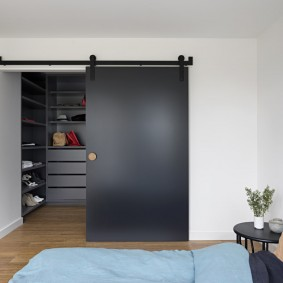 раздвижные двери в гардеробную фото оформление