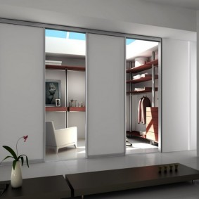 раздвижные двери в гардеробную виды дизайна