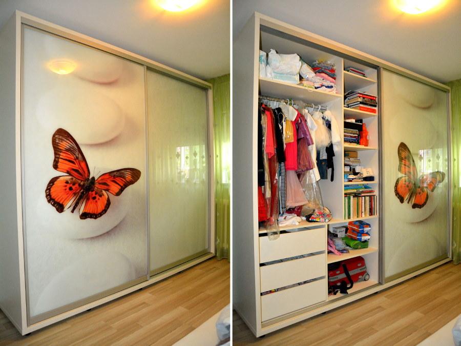 Огромная бабочка на стеклянной дверце гардеробного шкафа