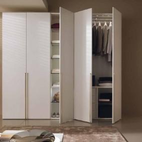 шкаф с распашными дверями в прихожую фото виды