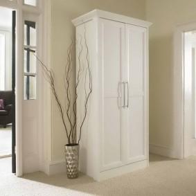 шкаф с распашными дверями в прихожую дизайн фото