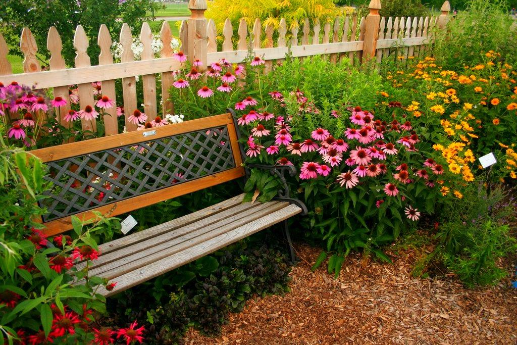 скамейка возле клумб