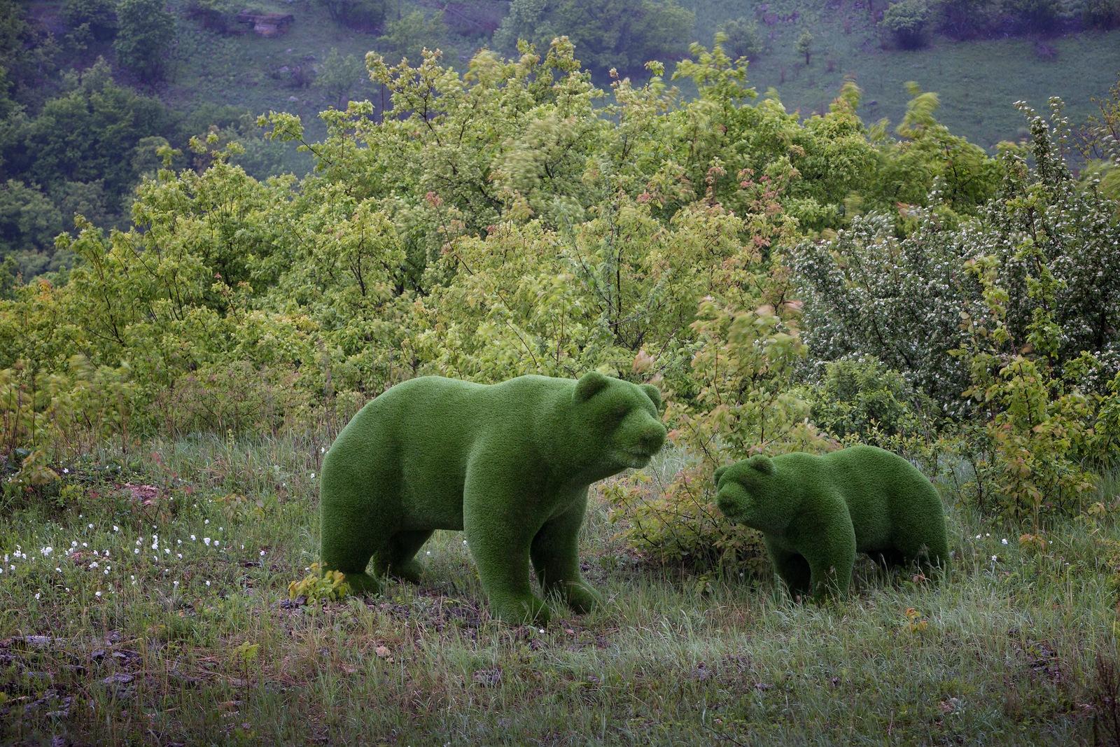 топиарии медведи