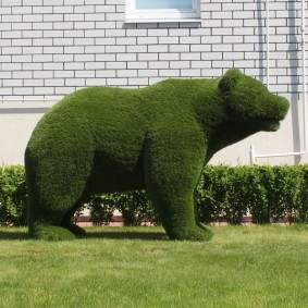 топиарий медведь