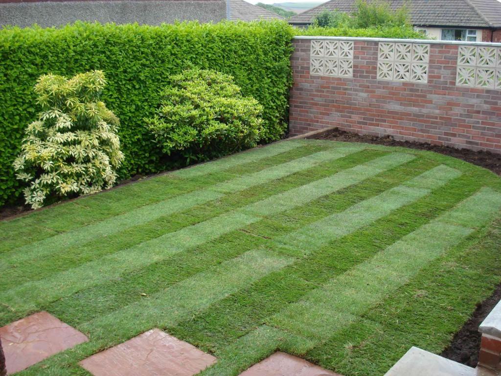 искусственный газон как выбрать
