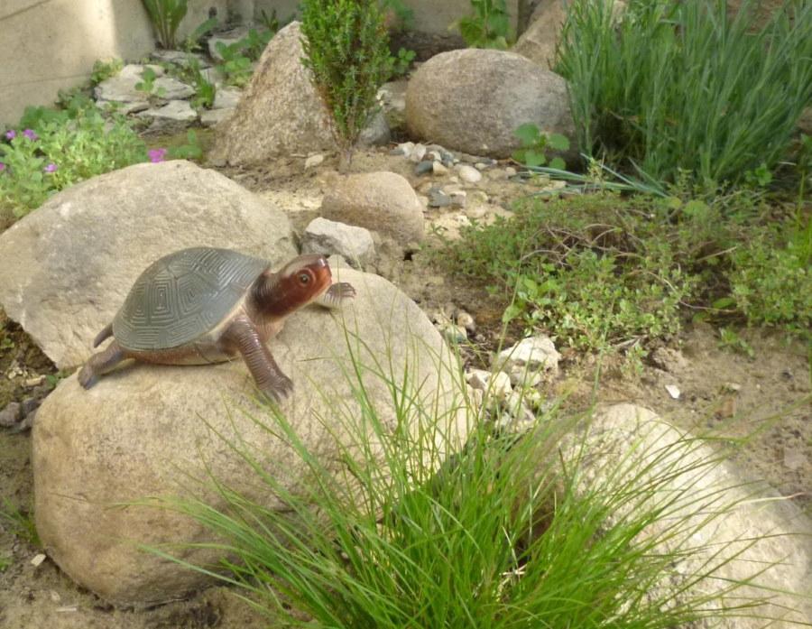 Фигурка черепашки на каменном валуне в саду