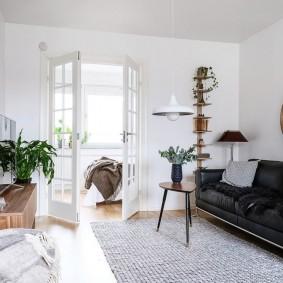 двери в зал и гостиную фото интерьера