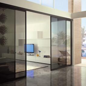 двери в зал и гостиную варианты идеи