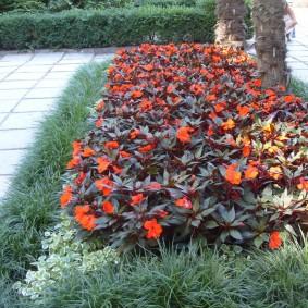 Клумба в саду с однолетними растениями