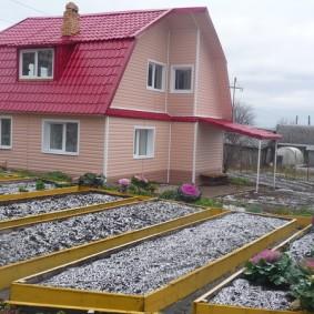 Желтые грядки на садовом участке