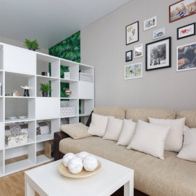 Стеллаж в роли разделителя пространства однокомнатной квартиры