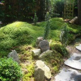Небольшие валуны в саду с холмами