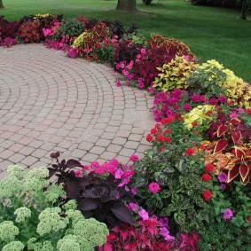 Кустики цветов вокруг площадки с брусчаткой