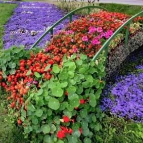 Цветочный мостик через сухой ручей