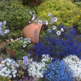 Многолетние цветы на клумбе во дворе