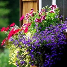 Контейнер с цветами под окном загородного дома