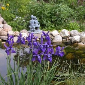 Сиреневые цветы на берегу искусственного водоема