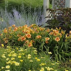 Клумба в саду пейзажного стиля