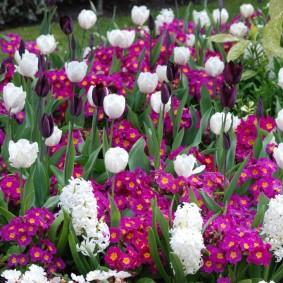 Цветочная композиция бело-фиолетовой расцветки
