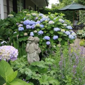 Садовая скульптура перед гортензией древовидной