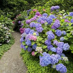 Небольшой участок сада в природном стиле